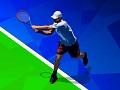Открытый чемпионат по теннису 2020