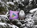 Лесные приключения Зимняя страна чудес